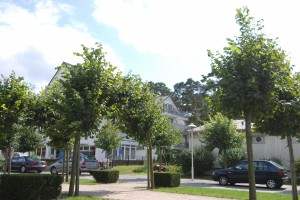 Kur- und Erholungsort Ostseebad Baabe