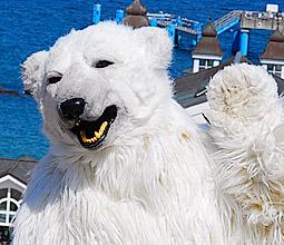 Bärenspaß: Eisbahn Sellin